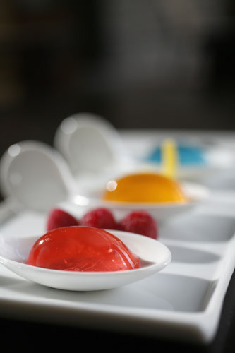 Jello Shots at the Hyatt Regency, Scottsdale